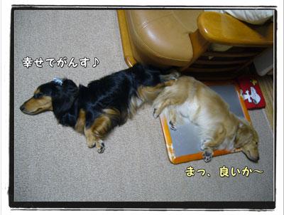2009071804.jpg