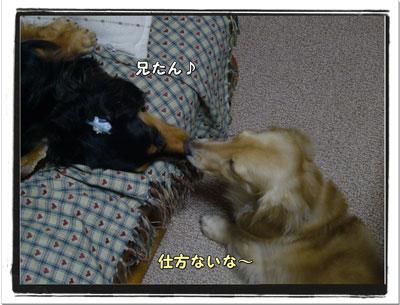 2009071902.jpg