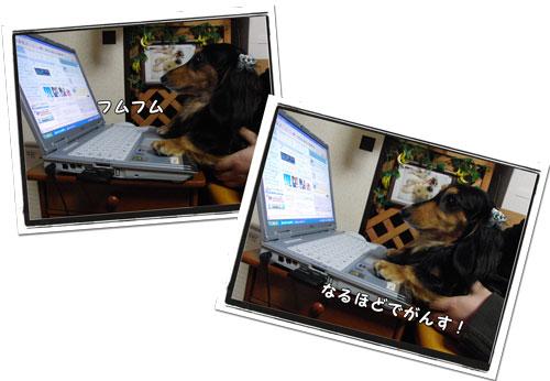 2009072503.jpg
