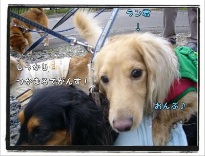 2009080503.jpg
