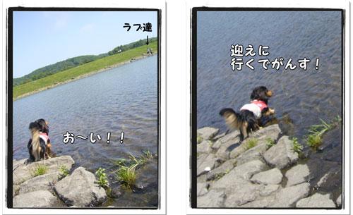 2009081204.jpg
