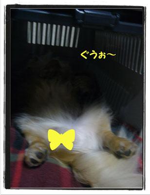 hausu1.jpg