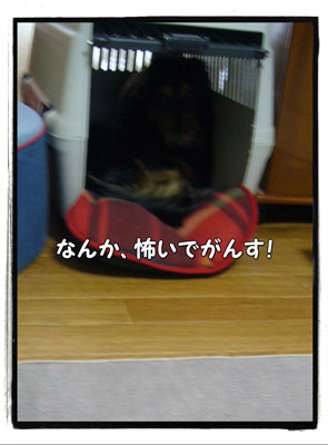 jyuutan2.jpg