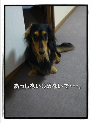 jyuutan4.jpg