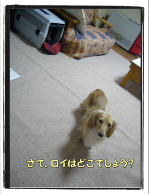 jyuutan6.jpg