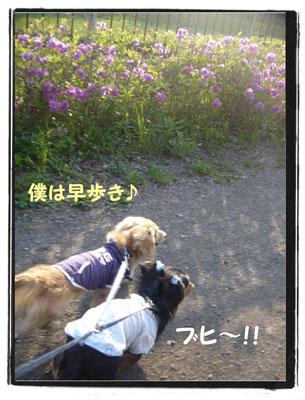 kazenoko5.jpg