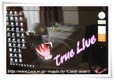☆True Live☆