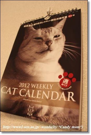 2012 WEEKLY CAT CALENDER