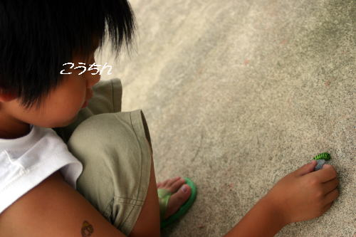 20070815234937.jpg