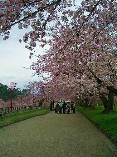 弘前公園③