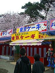 弘前公園 東京ケーキ