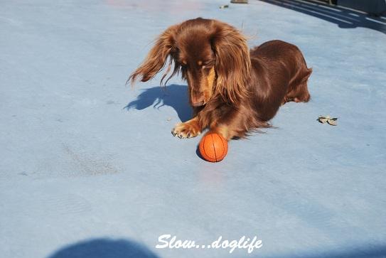 ボールで遊びます3