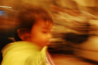 DSC_0214_convert_20081130190931.jpg