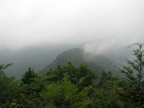81 高岩山