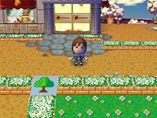 RUU_0002_20090109170327.jpg