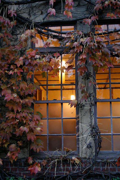 2006-11-23-0128.jpg