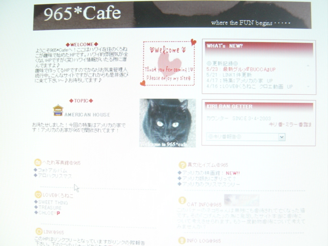 http://blog-imgs-24.fc2.com/9/6/5/965cafe/20050219161618.jpg