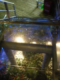 つり橋に上がる階段