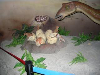 我が卵、子を見つめる母恐竜、、、でも、コワイ?
