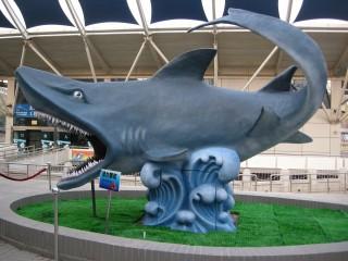 チケット売り場を抜けると、、、鮫がお出迎え