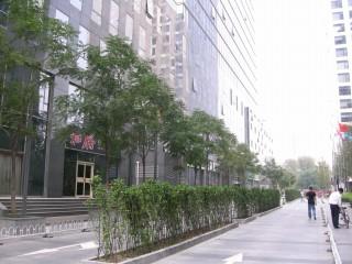 ホテル近辺の通り