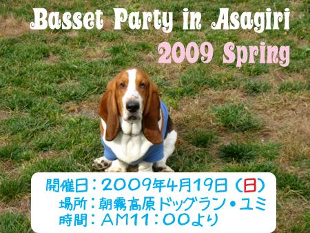 DSC05304のコピー