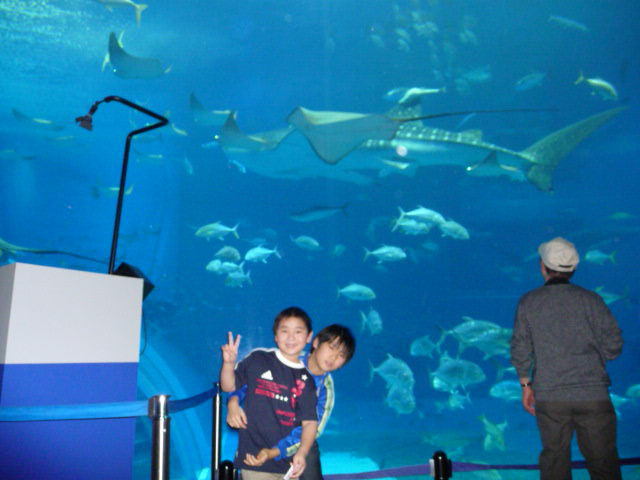 2009年1月沖縄家族旅行 025