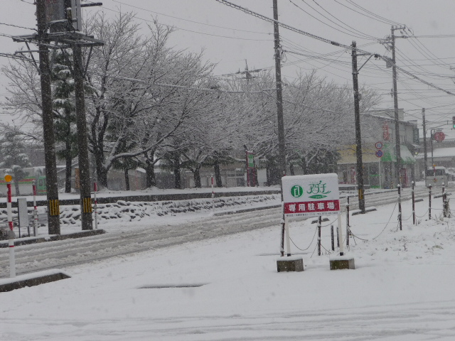 初雪 001