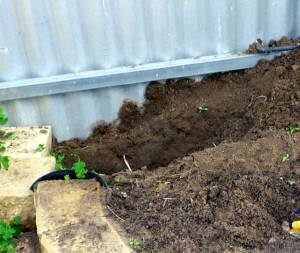 穴を掘った!