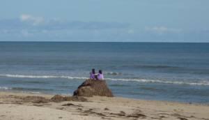 海藻の山で遊ぶ