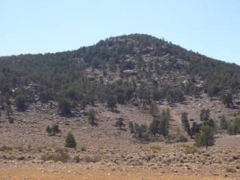 下から見た山