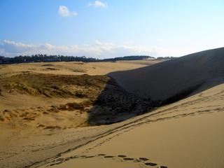 鳥取砂丘 のどか