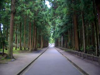 松島 田舎