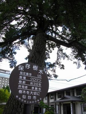 0906kosyoji19.jpg