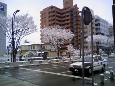 09haruyuki01.jpg
