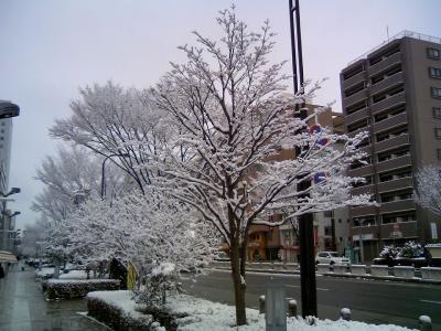 09haruyuki02.jpg