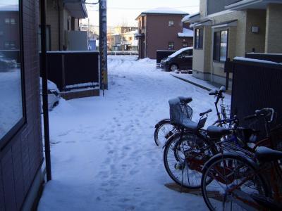 09ooyuki1.jpg