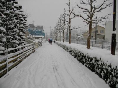 09oyuki03.jpg