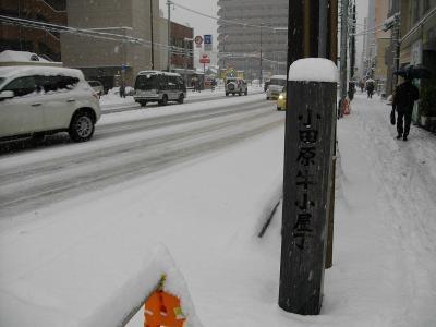 09oyuki04.jpg