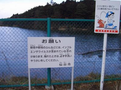 09yoheinuma01.jpg