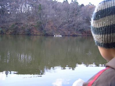 09yoheinuma05.jpg