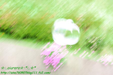 IMG_2403_20080613214435.jpg