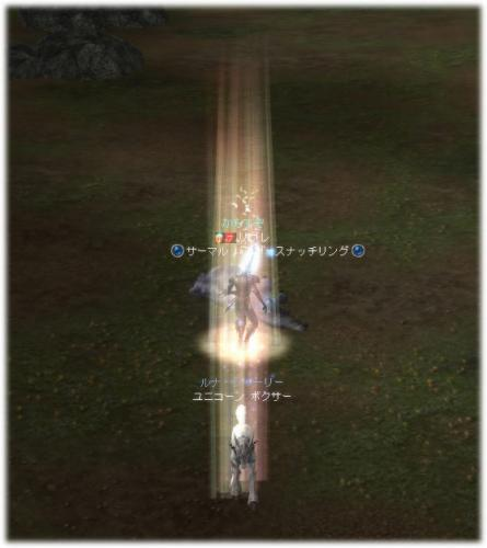 2008110801.jpg