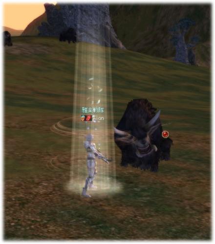 2009041901.jpg