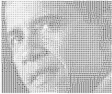 2009012506.jpg