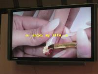 IM111919G_6885_convert_20081118110655.jpg