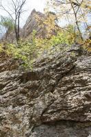 三つ岩岳49