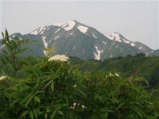 駒ケ岳038_R