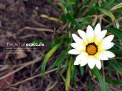 タックさん白い花