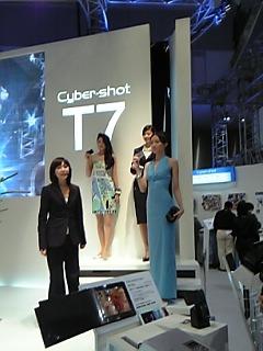 PIE2005Model